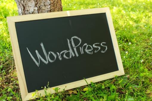 【2020年版】SEO対策Ping(ピング)解説とWordPressに設定する方法